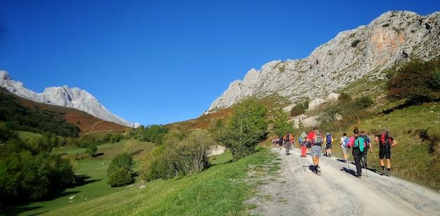 햇빛 아래 녹지로 덮인 언덕으로 둘러싸인 길을 걷는 등산객