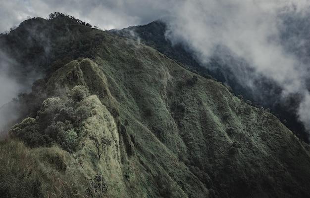 霧の美しい景色を見渡す高山でのハイキングの冒険。ナンのdoi phu khaで。