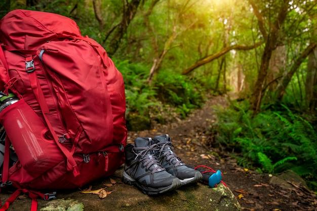 オーストラリア、タスマニアのジャングルにあるハイキングギア。