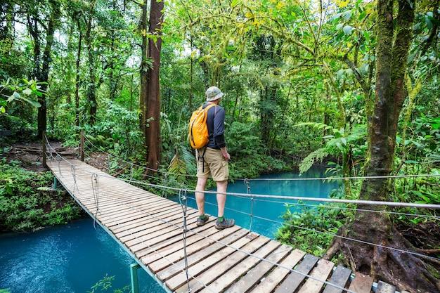 Hiking in green tropical jungle
