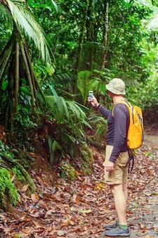 緑の熱帯のジャングル、コスタリカ、中央アメリカでのハイキング