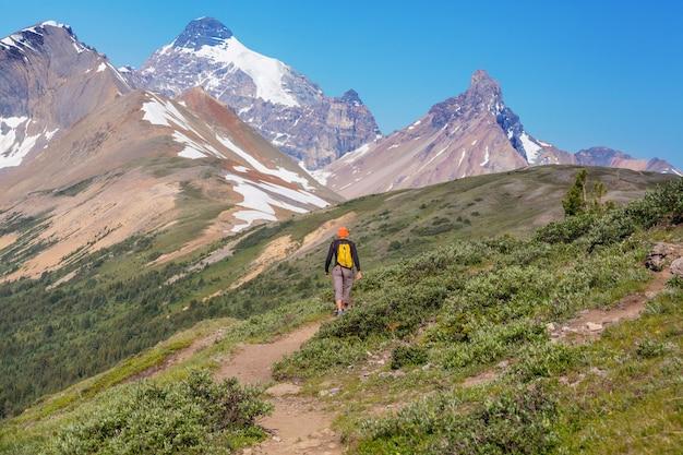 캐나다 산에서 하이킹 남자. 하이킹은 북미에서 인기있는 레크리에이션 활동입니다.