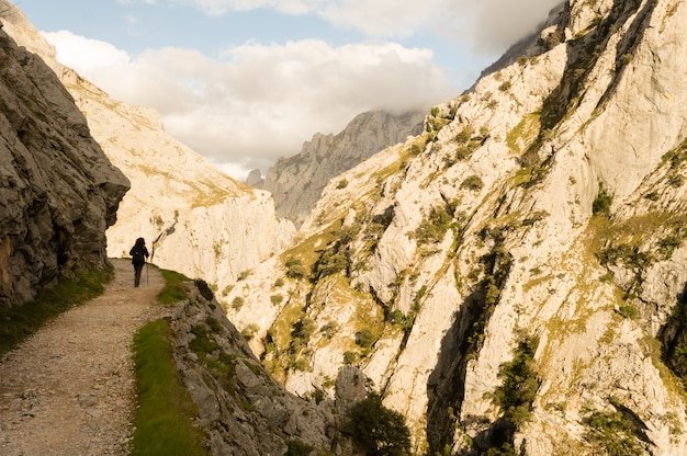 Hiking trail in cares river gorge, picos de europa between asturias and leon.