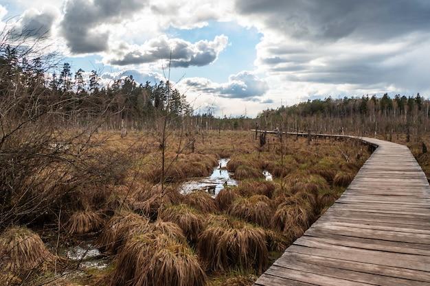 Походная тропа с деревянной дорожкой через болото.