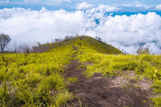 緑の草と青い空の美しい景色を望むハイキングコース