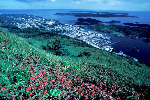 Hill overlooking coastal town, kodiak, alaska