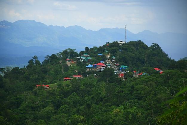 丘の中腹の自然景観