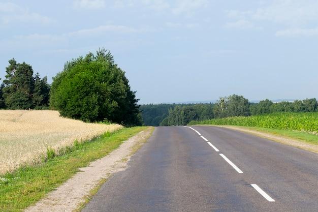 아스팔트 도로가있는 언덕이 많은 지형, 녹색 식물과 푸른 하늘이있는 여름 풍경
