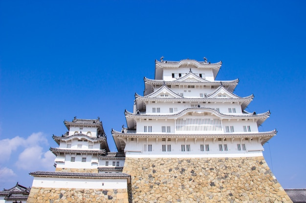 Himeji castle during sakura blossom time are going to bloom in hyogo prefecture, japan