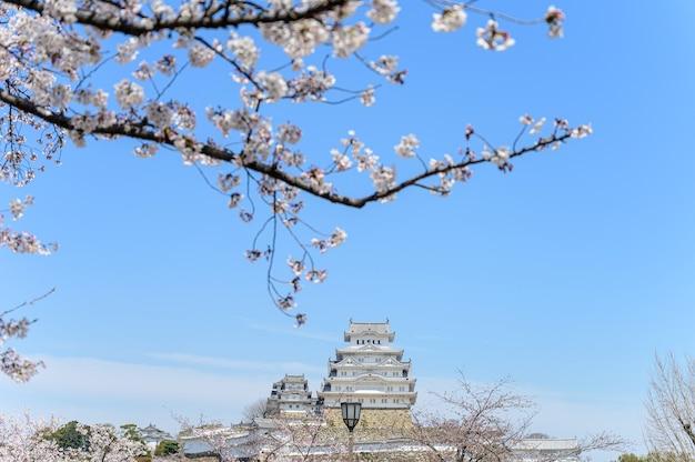 青い空と前景に桜や桜が咲く姫路城。