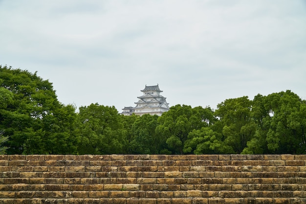 Himeji castle with tree and old wall