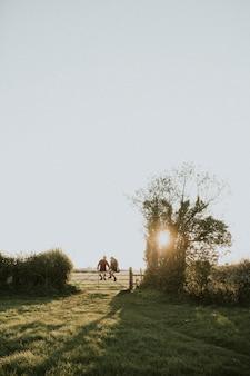 田舎で一緒に門に座っている流行に敏感なカップル