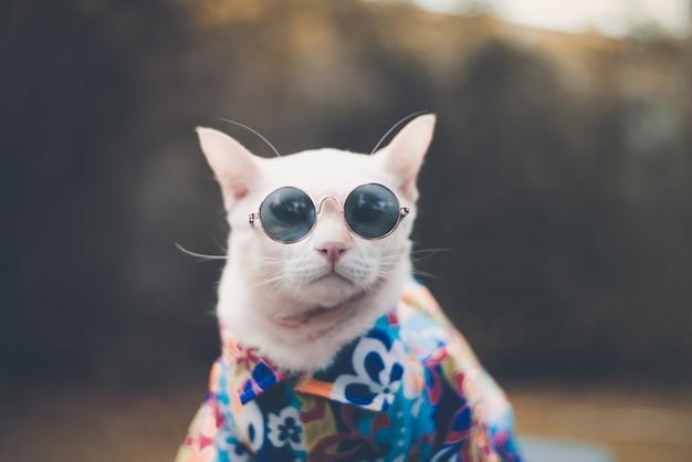 Портрет белой кошки hipster в темных очках и рубашке