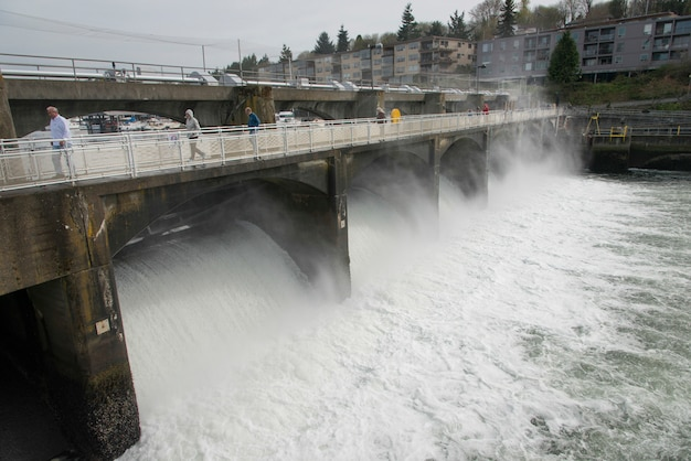 Hiram m. chittenden locks and carl s. english jr. botanical garden, lake washington ship canal, seat