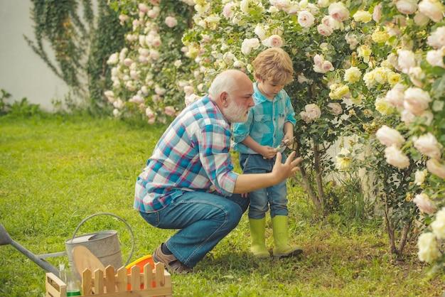 His enjoys talking to grandfather. spring and summer. father and son. bearded senior gardener in an urban garden. gardening hobby.