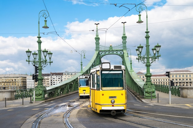 Historic trams on freedom bridge in budapest, hungary