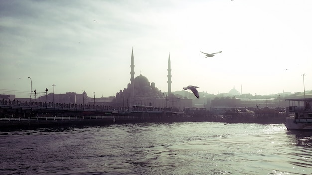 Historical bridge and mosque view on istanbul eminonu