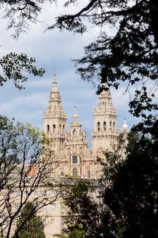 木のブランチと歴史的な大聖堂の眺め