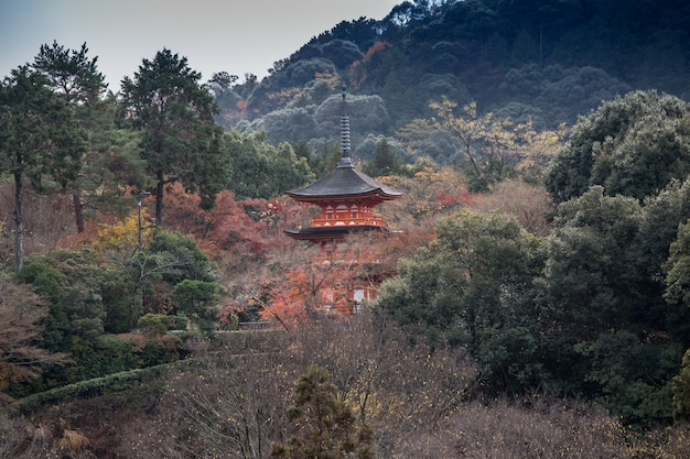 Historical japanese pagoda in the wood
