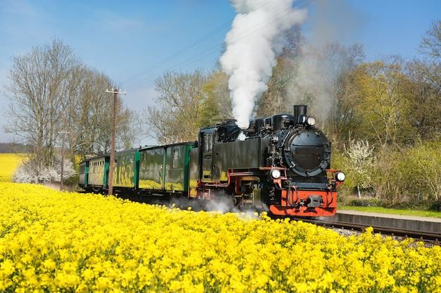 Historical steam train on island ruegen in spring