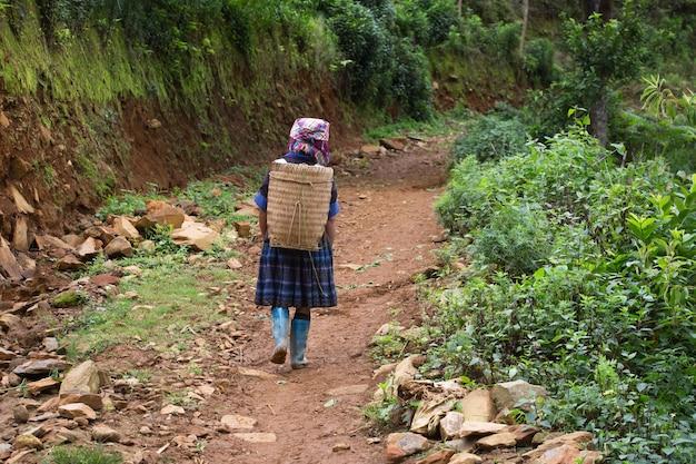 Hmong on mountain