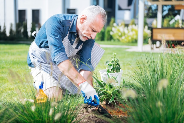 Hoe in hands. bearded mature man wearing white gloves holding little hoe in his hands while grubbing the weeds up