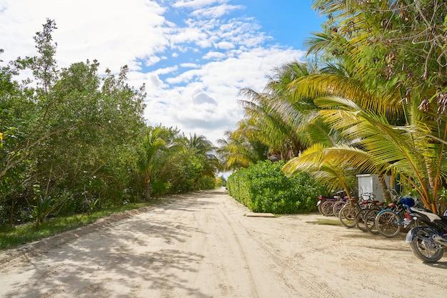 Quintana roo 멕시코의 holbox 열대 섬