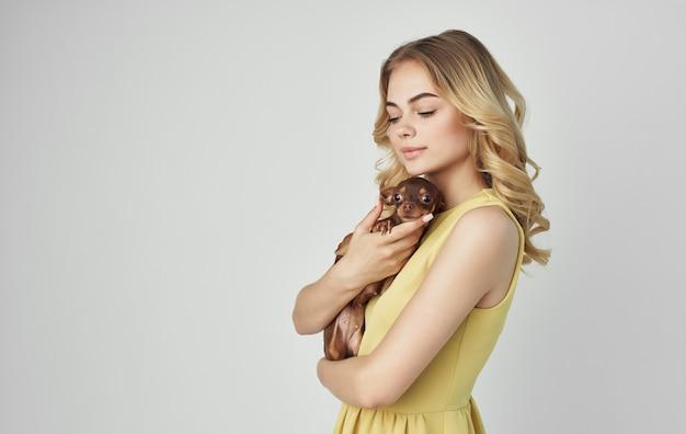 純血種の犬チワワの友情を持ってペットを抱きしめます。