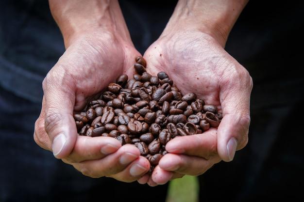 손에 커피 콩을 들고