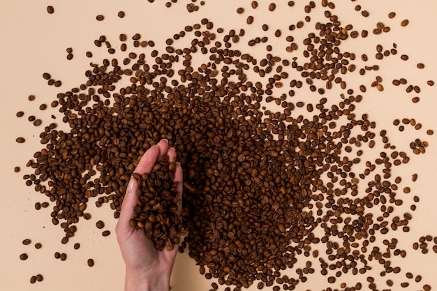 Holding coffee beans with the hand