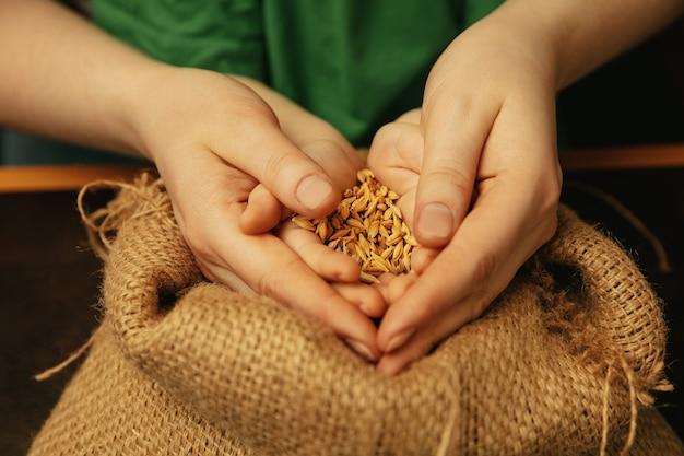黄金色の小麦粒を保持しています。一緒に異なることをしている女性と子供の手のショットをクローズアップ。家族、家、教育、子供時代、チャリティーの概念。母と息子または娘、富。