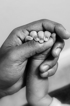 Holding hands. paternity concept