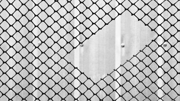 Hole at plastic net - monochrome