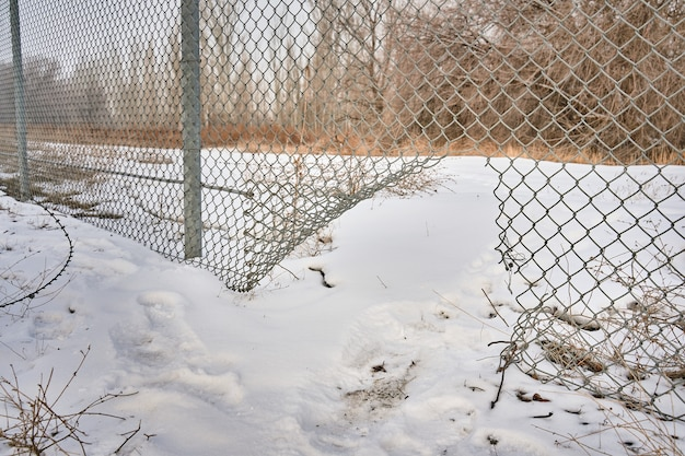 Hole in wire border fence illegal trespassing escape from prison or closed institution for mentally ...