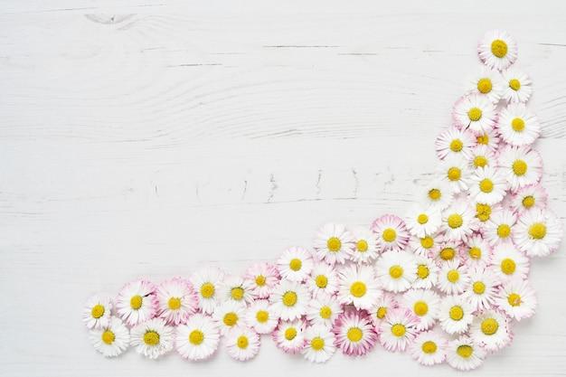 Holiday background. daisy flowers border on white wood