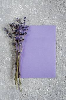 Holiday background or greeting card with lavender.