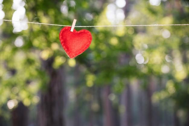 Праздничная открытка с красным сердцем на фоне зеленой растительности. концепция дня святого валентина