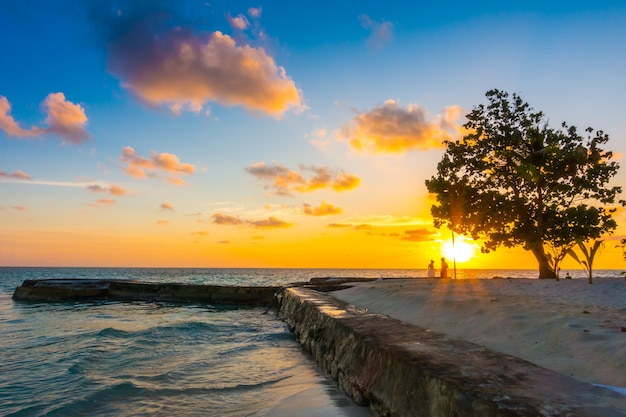 休日の楽園夕暮れ島観光
