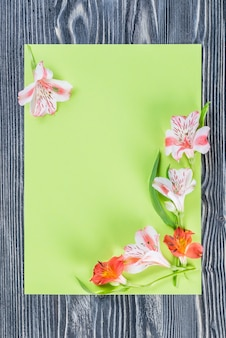 空の紙シートと花、花の壁と休日のはがき