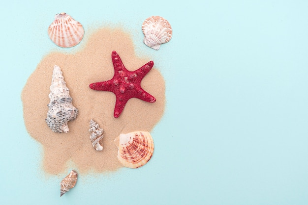Holiday, summer vacation. composition with sand and seashells, top view. space for text. layout for ideas.