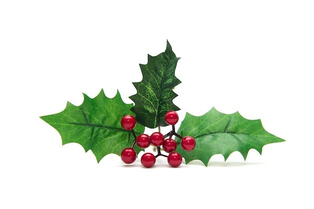 Холли берри оставляет рождественские украшения, изолированные на белом фоне