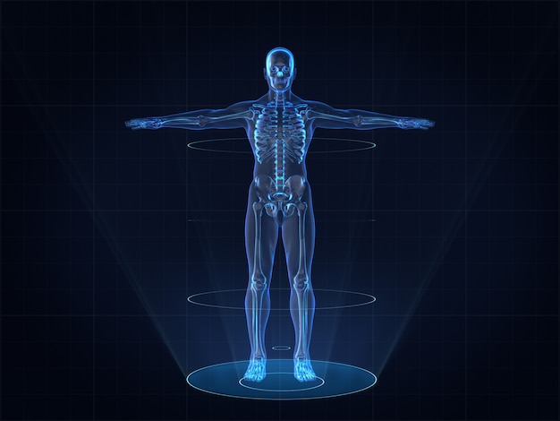 Hologram image of human male skeleton