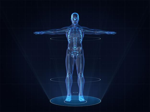 人間の男性の骨格のホログラム画像