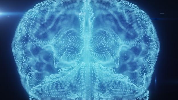 人間の脳のホログラム