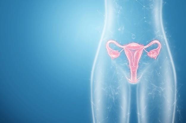 子宮の女性の臓器のホログラム、子宮と卵巣の病気、月経痛。健康診断、女性の診察、婦人科。 3dイラスト、3dレンダリング。