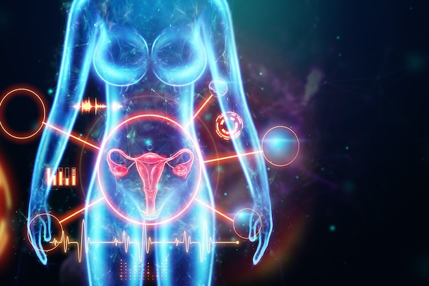 자궁 여성 기관의 홀로그램, 자궁 및 난소의 질병, 월경통. 건강 진단, 여성 상담, 산부인과. 3d 그림, 3d 렌더링.