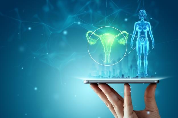 タブレット上の子宮の女性の臓器のホログラム。超音波の概念、婦人科、産科、妊娠、現代医学。