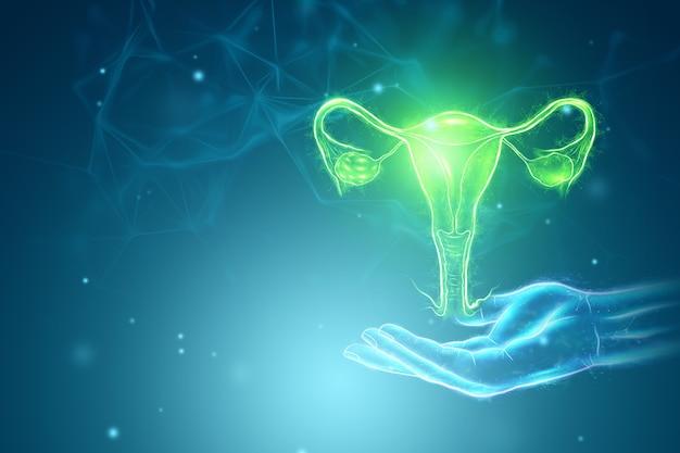 Голограмма женского органа матки. концепция узи, гинекология, акушерство, овуляция, беременность. 3d иллюстрации, 3d визуализация.