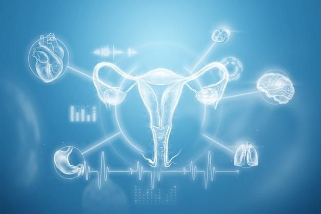 さまざまな医学的適応症を伴う子宮の女性の臓器のホログラム、子宮の超音波。超音波の概念、婦人科、産科、排卵、妊娠。 3dイラスト、3dレンダリング。