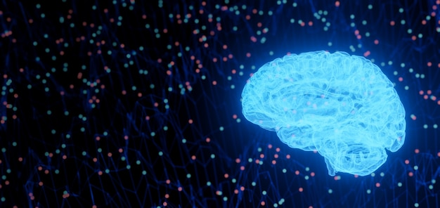 홀로그램 뇌 네트워크